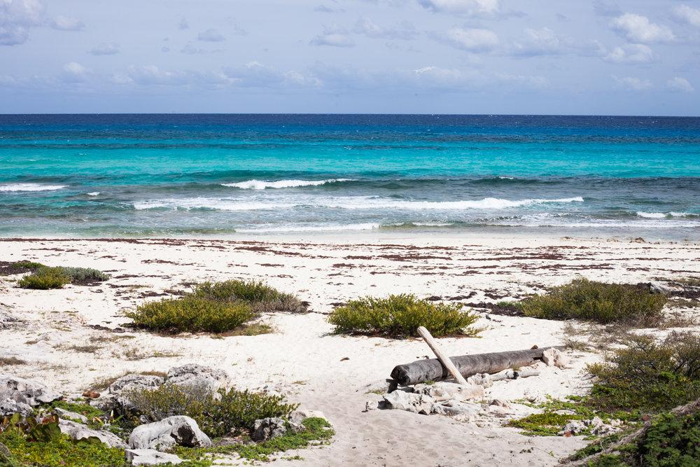 Caribe-33.jpg