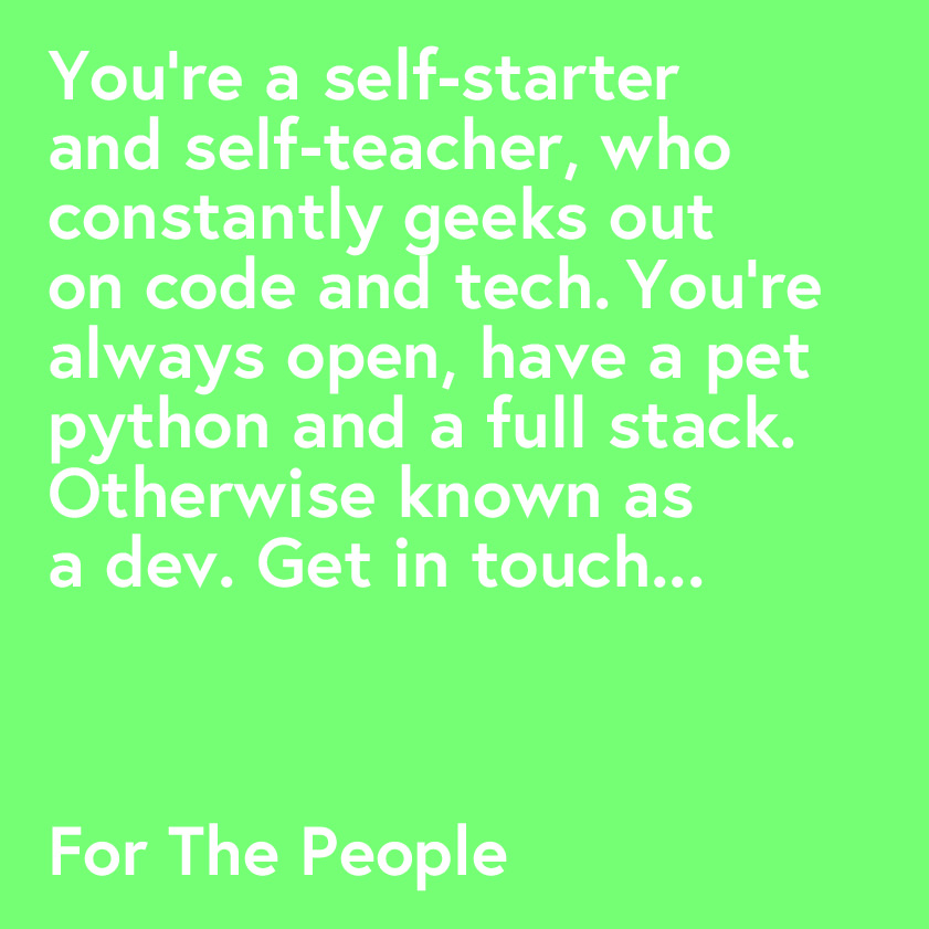 Developer Role