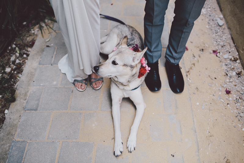 חתונה באיסמי סלמה לירון אראל