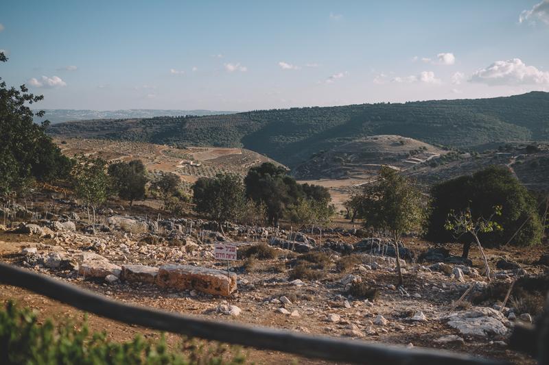J&F wedding in israel by Liron Erel 0022