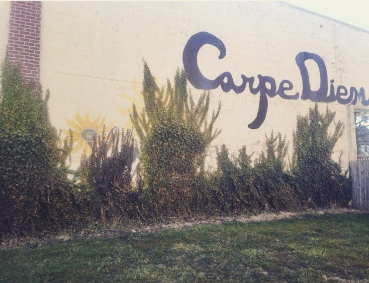 Carpe Diem, or in other words, Seize the Day! This painted wall is one block from my house and I love this little reminder when I pass by it each day.