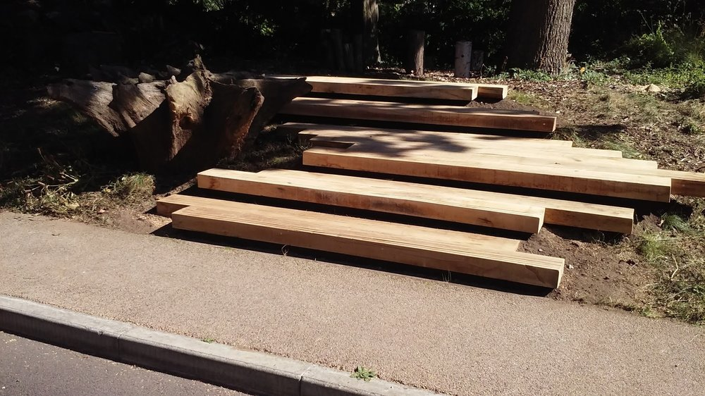 Floating steps to woodland classroom.