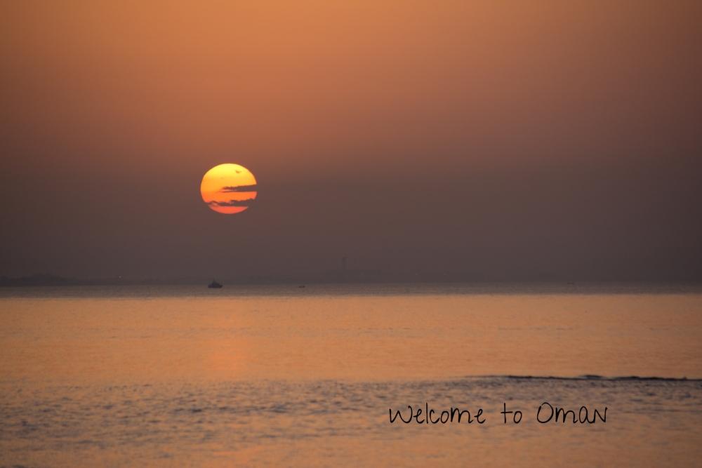 SUN_BLOG-0988.jpg