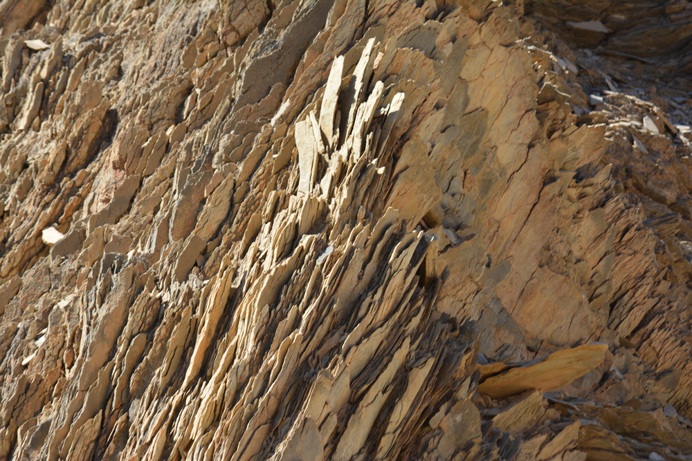 Layers of soil nearly vertical as they collide and build mountains.