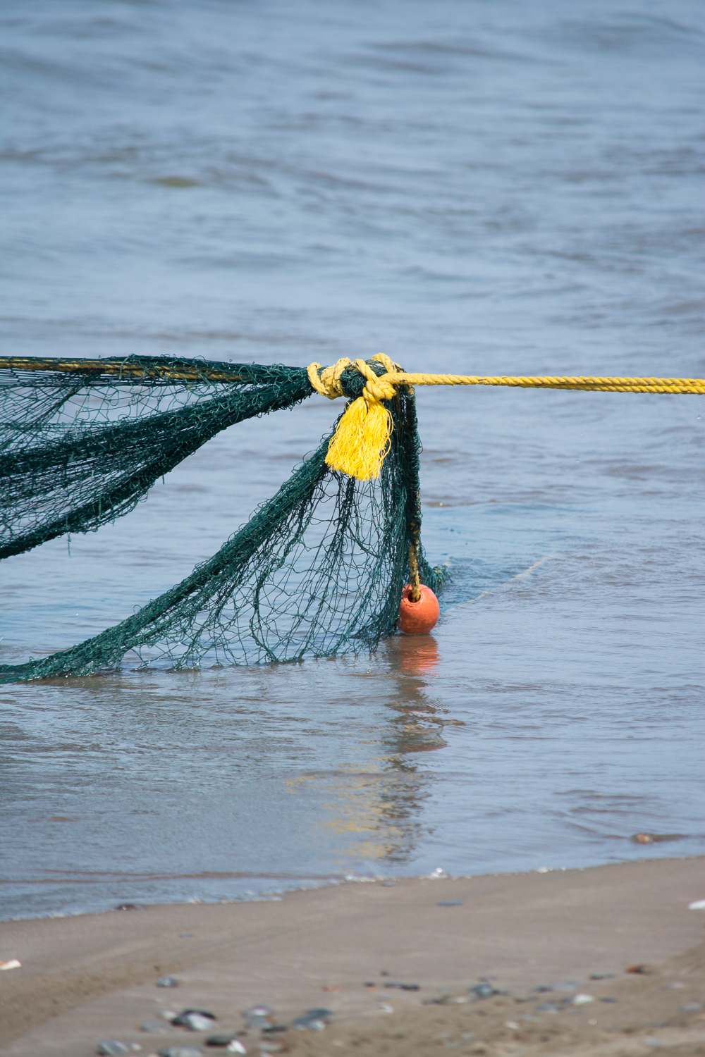 The haul rope attached to the net.