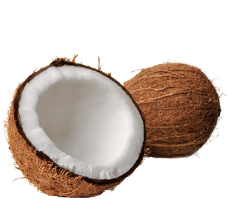 Coconut Oil Weight Loss (5).png