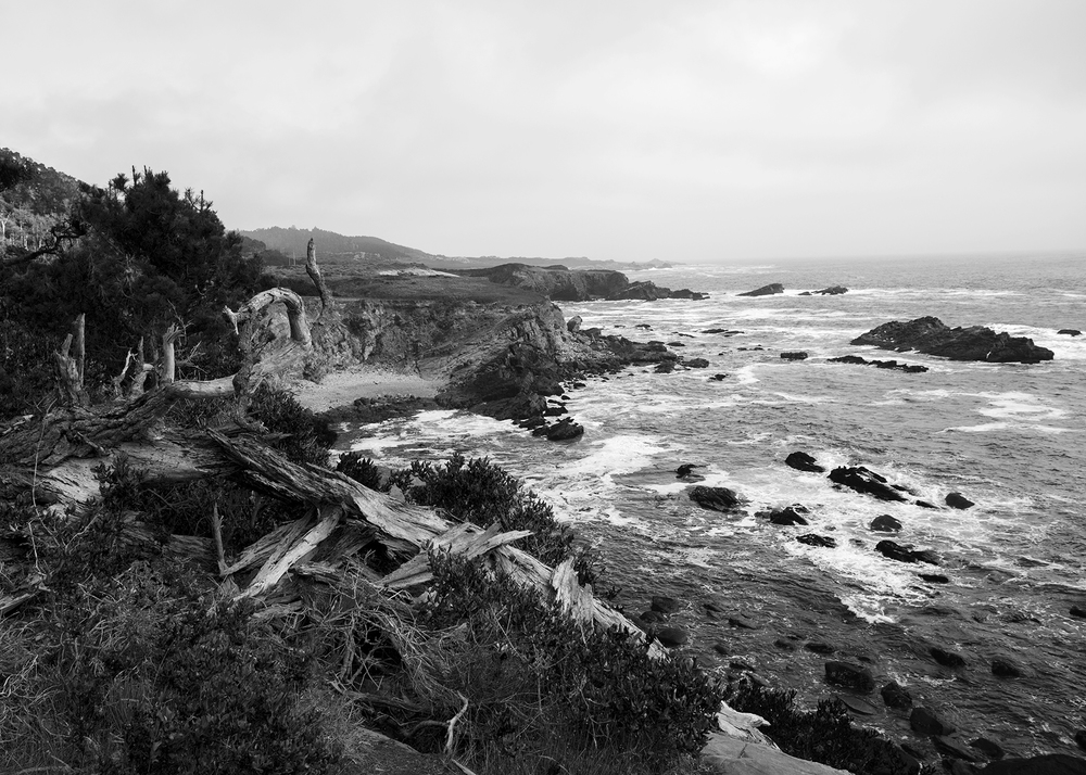 coastline15.jpg