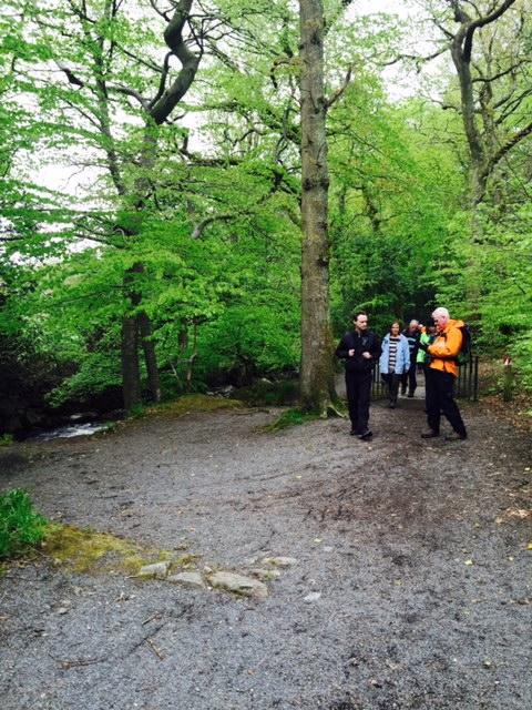 Gleann Sí - áit faoi dhraíocht - na crainn dúchais agus an abhainn álainn Chill Bhrónaí. The Fairy Glen - magical place - native trees and the beautiful Kilbroney river.
