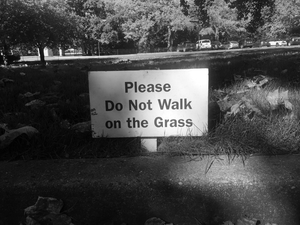 please don't walk on the grass.jpg