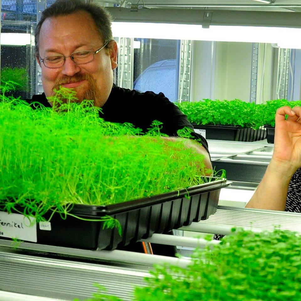 Mikrogrønt - Produserer urter i Knarvik.