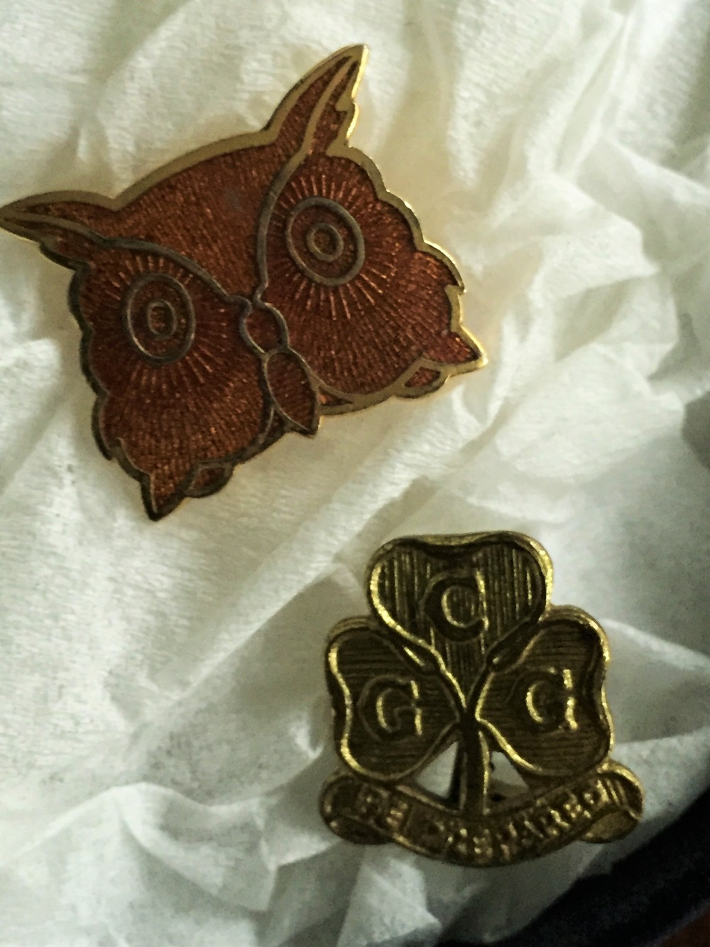 Brown Owl and Guide pins
