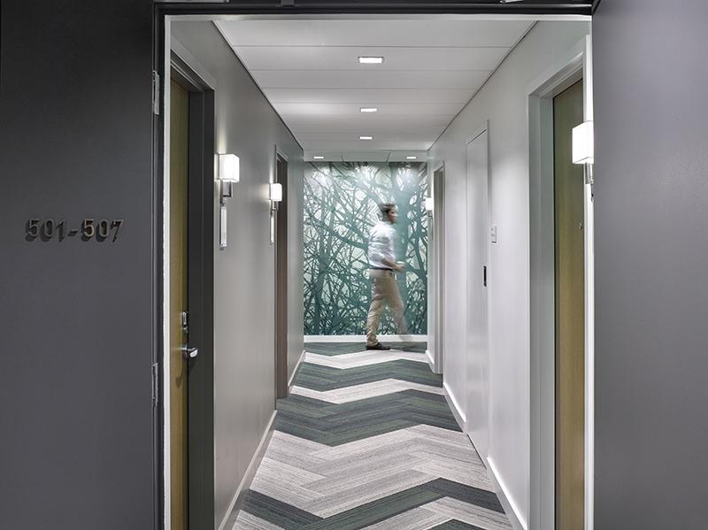 VNNSS_Int_14_RoomCorridor_B_p_CF028249-2_GR.jpg