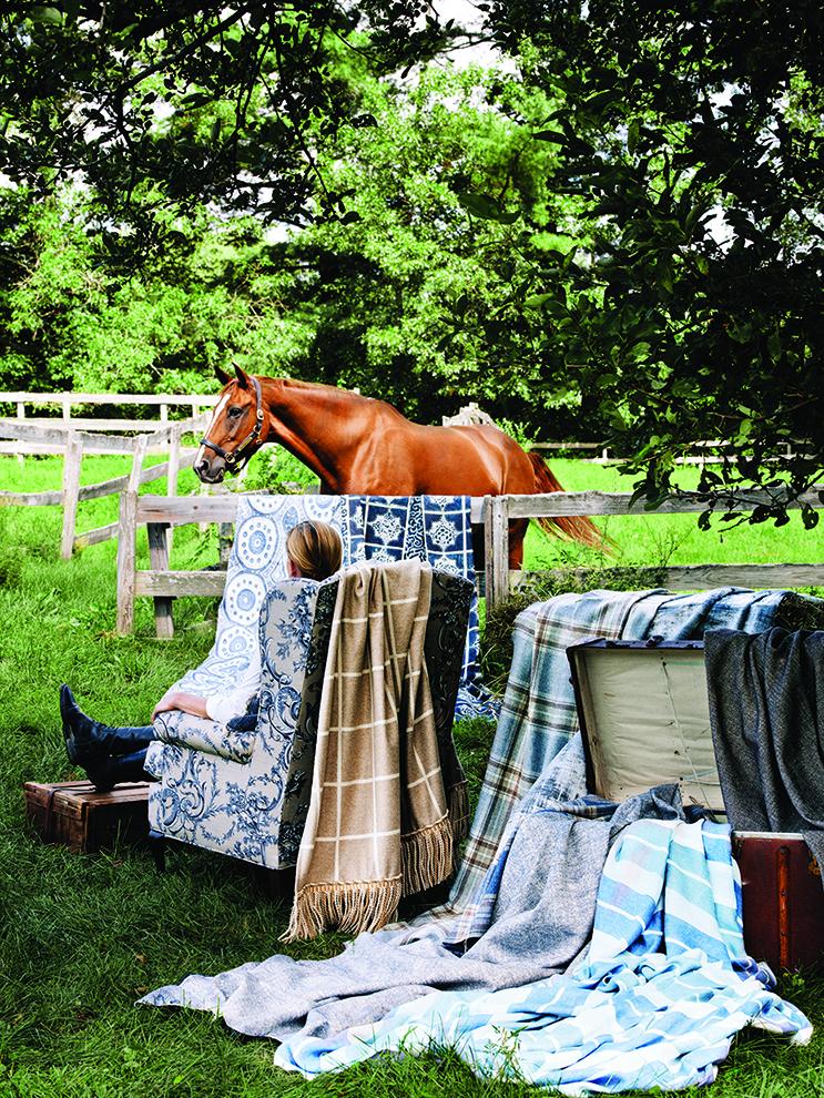 fea_equestrian4.jpg