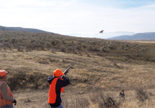 alan_peterson_youth_pheasant_hunt_2 (1) (1).jpg