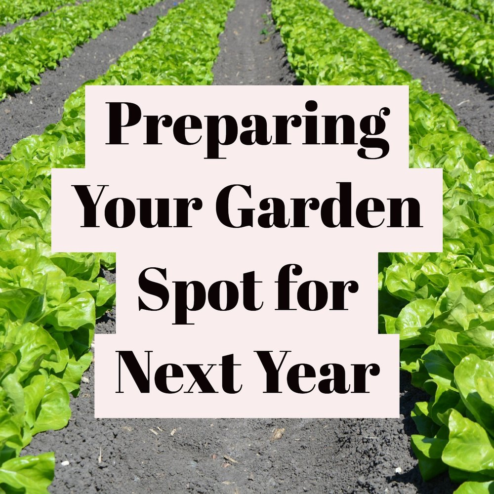 preparing your garden.jpg