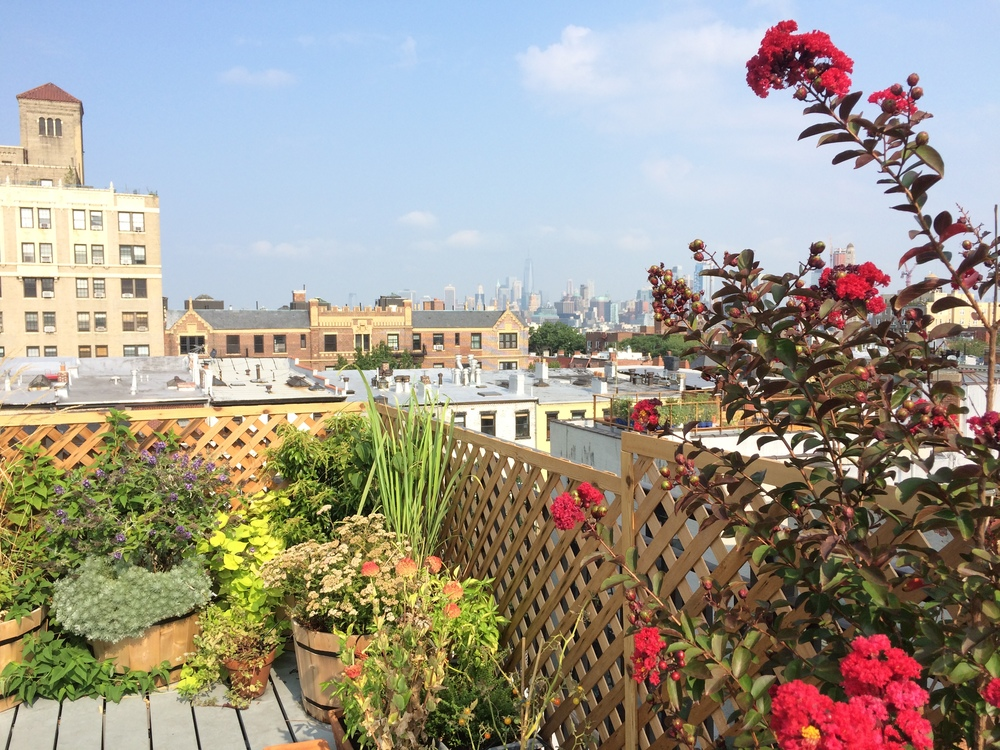 Roof Deck in Park Slope