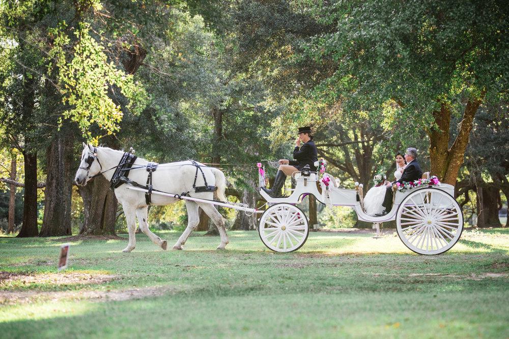 Barn-Wedding-Ates-Ranch-Wedding-Photo-Photography-Video-Videography-Pensacola-Florida-Courtney-Clint-27.jpg