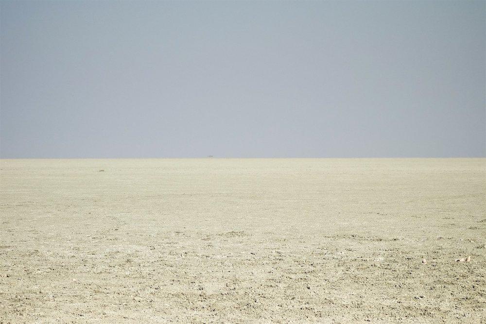 Namibia the pan 5.jpg