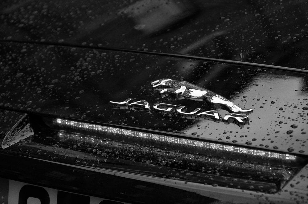 blyss-jaguar-makingof-03.jpg