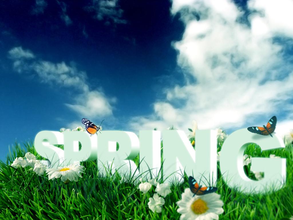 spring break — the king's school
