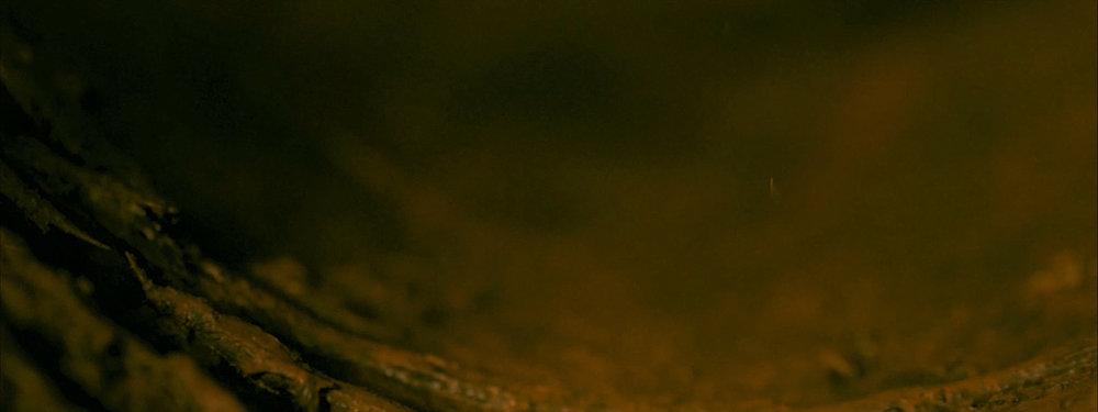 03_film_footage.jpg