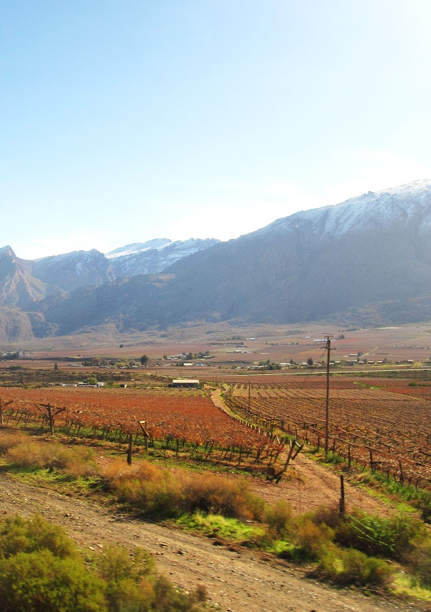 matroosberg mountains and winelands