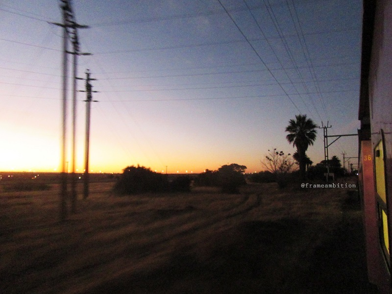 karoo_sunset_palm _trees
