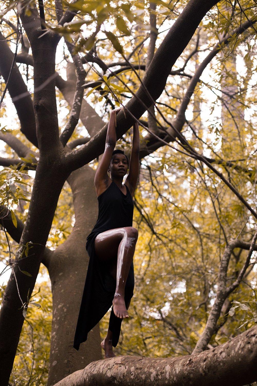 girl_climbing_tree