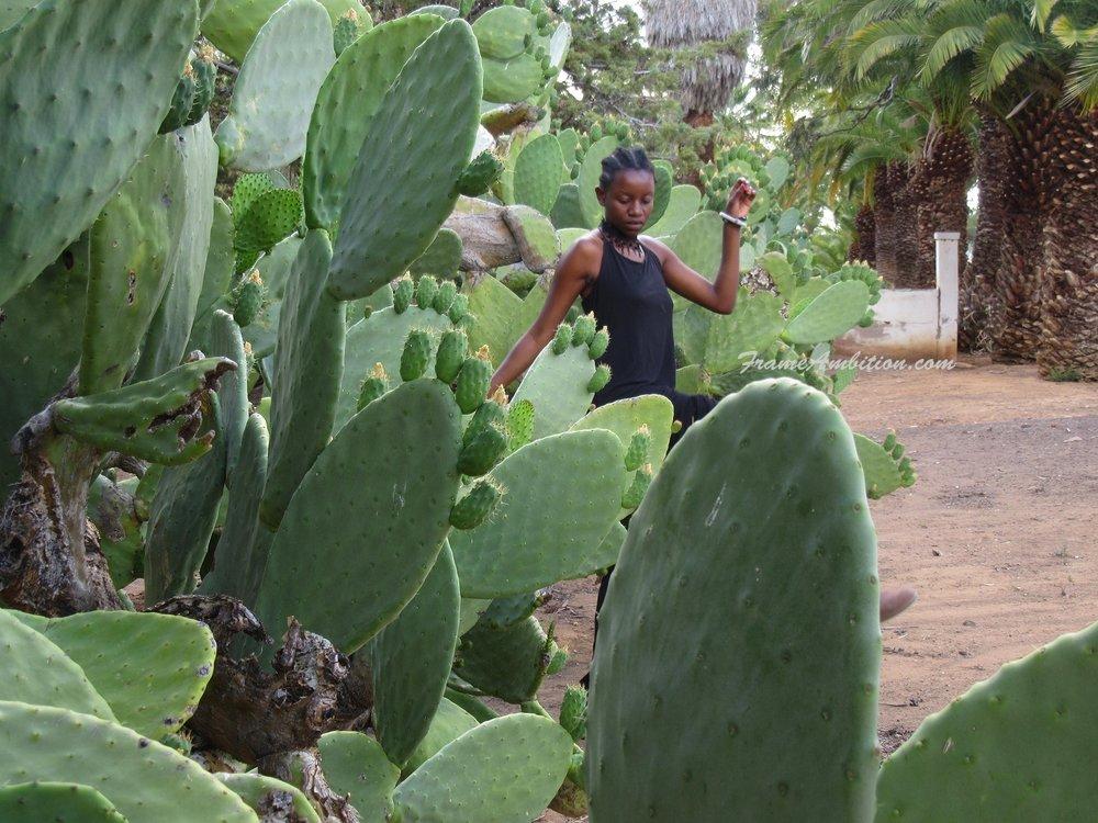 cacti-karoo-girl