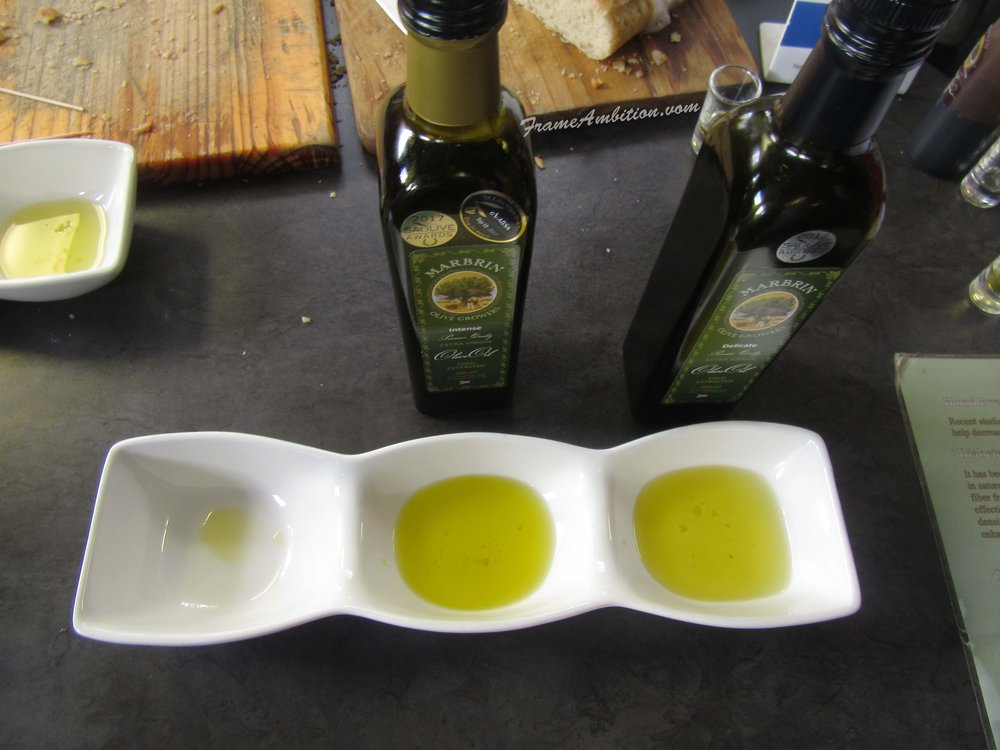 Sampling the finest South African olive oils at Marbrin Olive Farm, Montagu