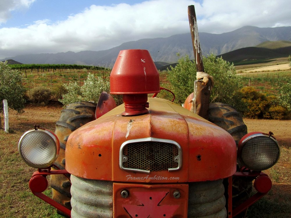 Tractor at Marbrin Olive Farm, Robertson