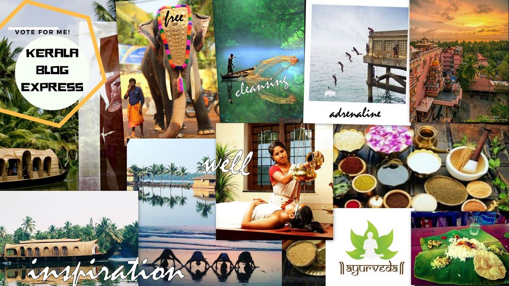 My travel vision board I made for India last year. I'll make it there some day soon!