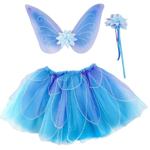 fairy wings and tutu.jpg
