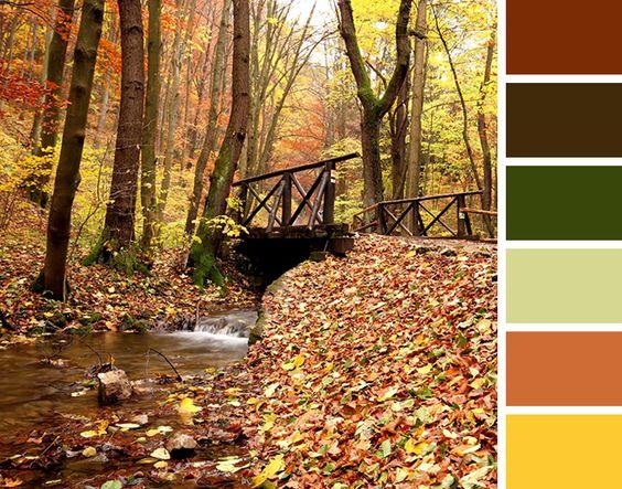 Color palette image by: Diamond Vogel