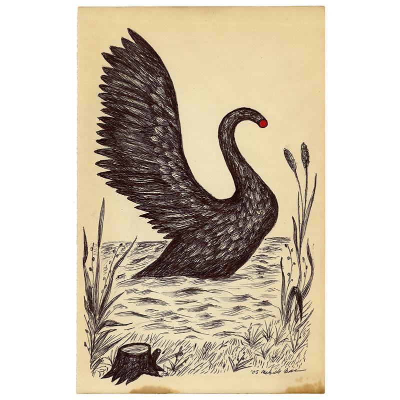 Swan 4.14
