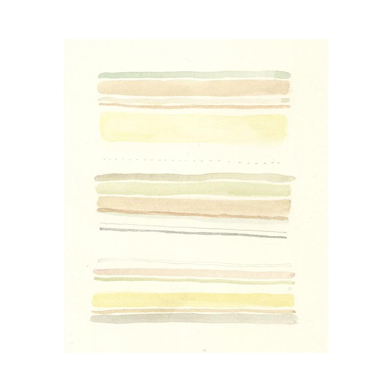 Stripes 317