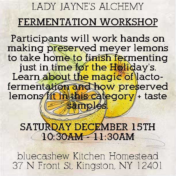 preserved lemons workshop.jpg