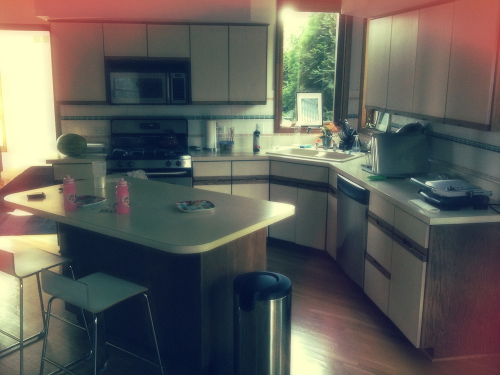 1_ExistingKitchenBefore.jpg