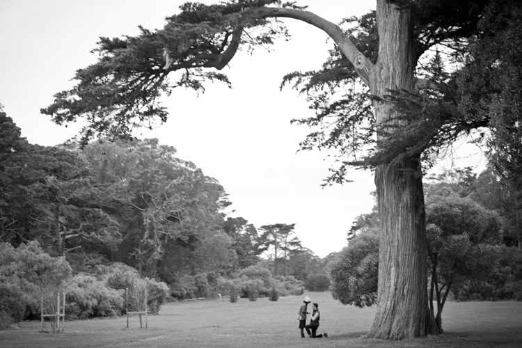 David and Alyssa's speedway meadows proposal photo. Golden Gate Park, San Francisco