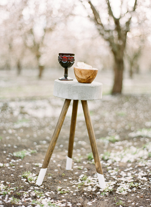 03-almond-orchard-wedding.jpg