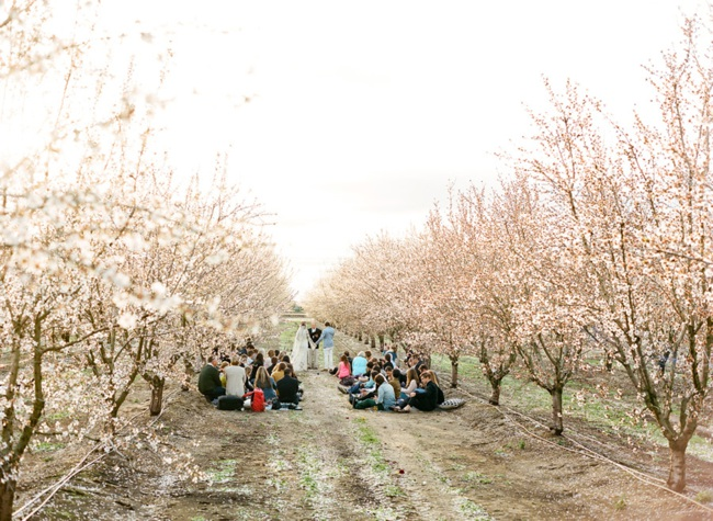 14-almond-orchard-wedding-josh-gruetzmacher.jpg