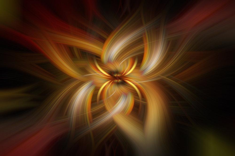 IMG_7243 Floral web.jpg