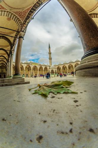 Curtea interioară a Moscheii Albastre văzută prin fisheye