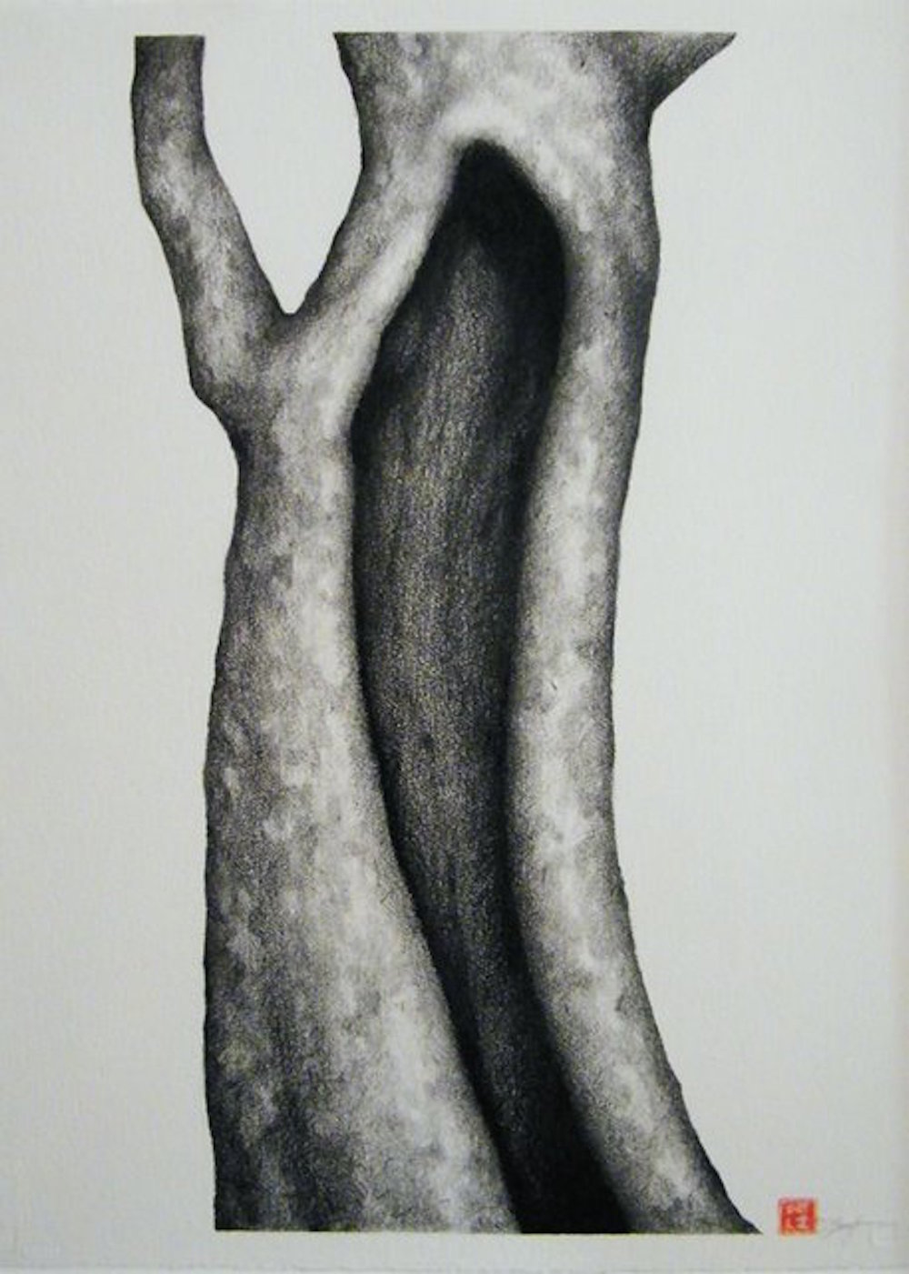"The Hollow Graphite and conte on paper  40"" x 32"""