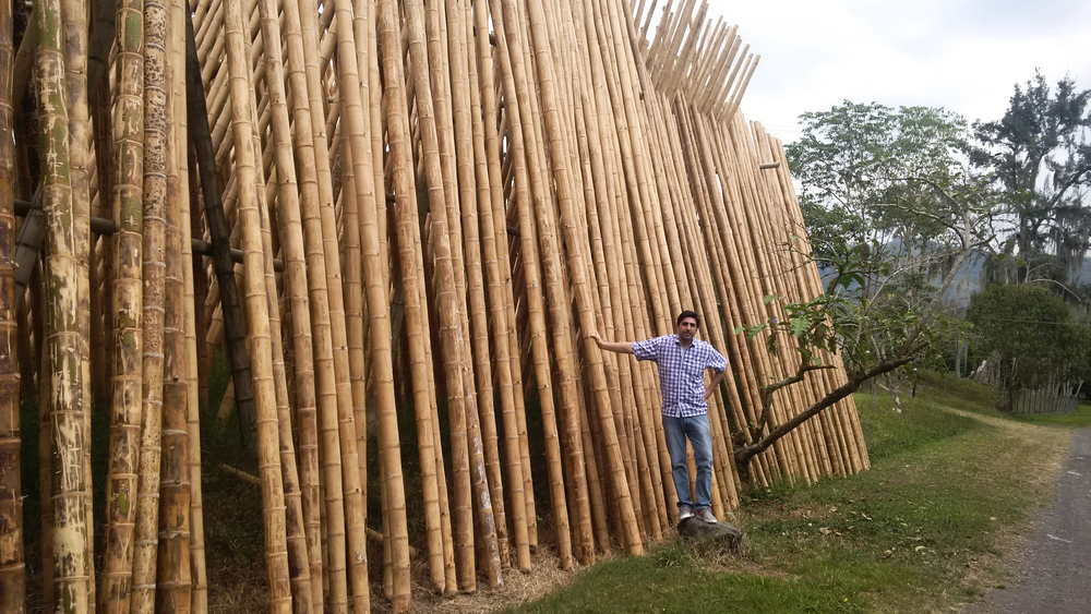 The Best Bamboo CEO/Founder - Santiago Perdomo
