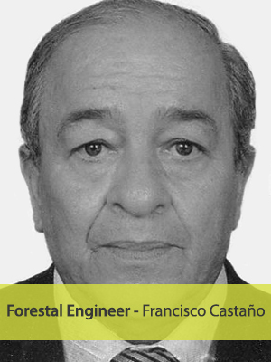 Francisco Castaño - Forestal Engineer