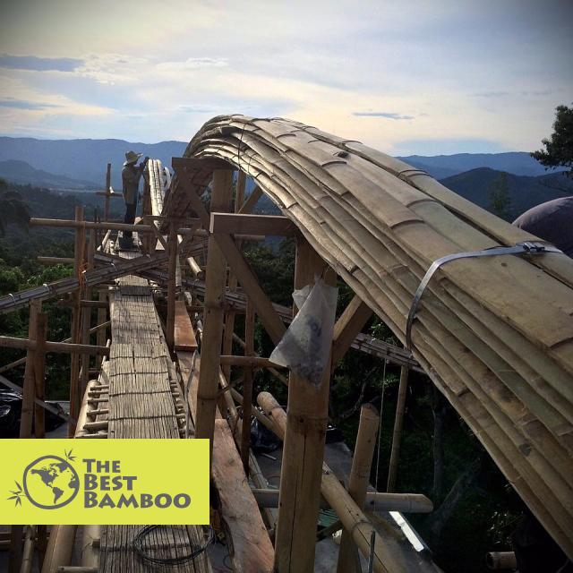 Incredible use of Bamboo Slats by architect Jaime Peña