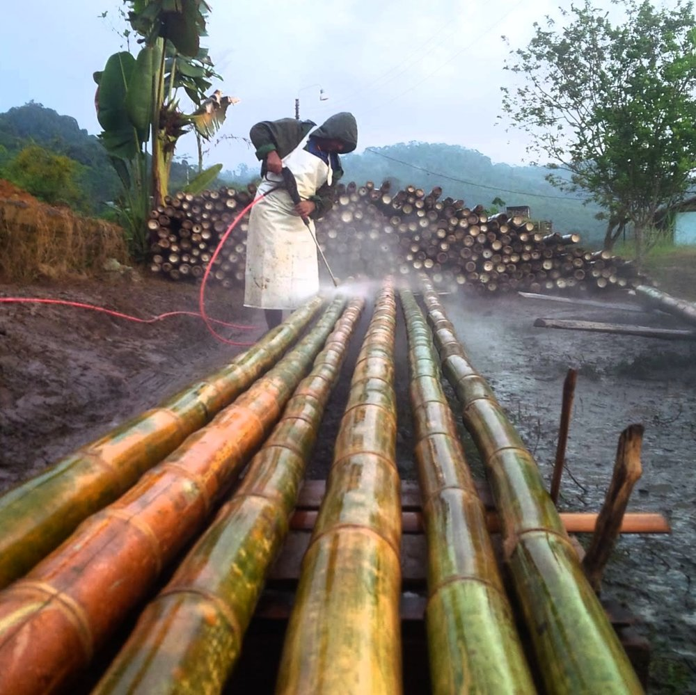 Bamboo Cleaning, a must to have The Best Bamboo Poles for Sale