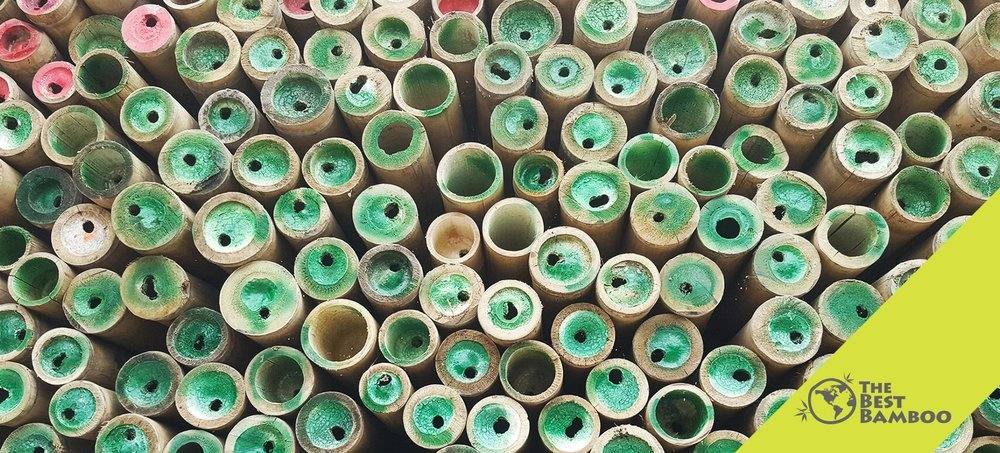 The Best Bamboo Poles for Sale: Loaded Bamboo Container