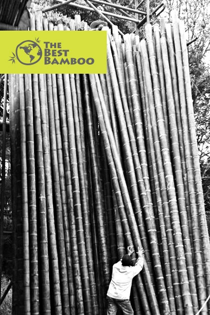 dryingpoles.jpg